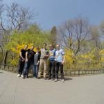 Visite au parc des bambous